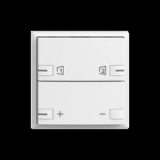 Taster EDIZIOdue F zeptrionAIR Dimmer S1/S2 mit LED
